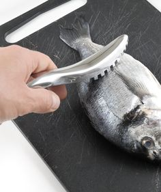 Squamapesci #igenietti Per squamare il pesce velocemente senza sporcarsi le mani!