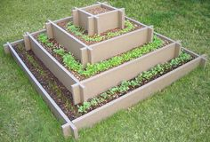 Pyramid raised garden...a smaller, freestanding version of this would be cool on my patio