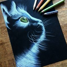 Drawings On Black Paper Ideas ; Drawings On Black Paper - Effektive Bilder, die wir über decorating ideas for the home anbieten Ein Qualitätsbild kann Ih - Pencil Art Drawings, Cat Drawing, Animal Drawings, Art Sketches, Painting & Drawing, Drawing Animals, Pretty Drawings, Beautiful Drawings, Awesome Drawings