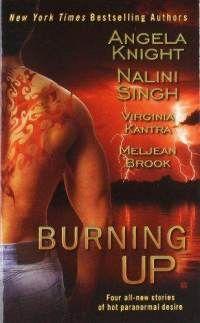 Burning up/ Angela Knight, Nalini Singh, Virginia Kantra, Meljean Brook