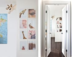 Beautiful idea for Wriggies wall - now thinking an obsessive trip to zoo to photograph feathers and such is totally in order