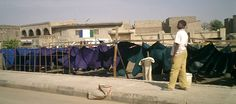 """From Fiona Lovatt in Kano: """"Yards dyed in the morning, dry in a few hours. Yet to be ironed and taken to the fabric market."""""""