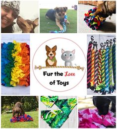 An online market event featuring the work of a large group of talented crafters and artists. Bandanas, Rescue Dogs, Your Pet, Singapore, Harvest, Cute Animals, Range, Fur, Night