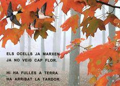 Poema LA TARDOR P3