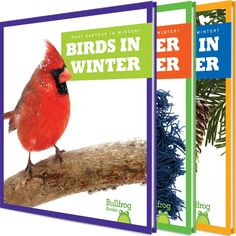 When the weather turns cold and it starts to snow, kids can bundle up or stay inside. But what do plants and animals do when winter comes? This series explores the natural world in winter through vibrant photographs and easy-to-read, engaging text.