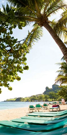 We saved a spot for you! Paradise - Dominican Republic - beaches - RIU Hotels & Resorts