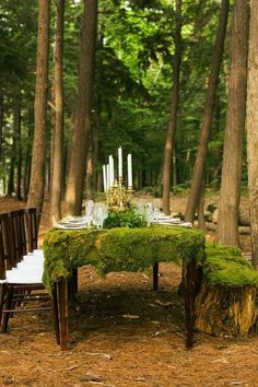 A lush greenery table runner is an awesome way to refresh your table décor. Get some greenery, moss and leaves and create a wonderful table decoration! Place Settings, Table Settings, Enchanted Forest Wedding, Magical Forest, Deep Forest, Deco Nature, Wood Stone, Outdoor Settings, Deco Table