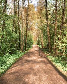K/amera — ELLEN K/REATIVE Country Roads, Pictures, Camera, Photos, Grimm