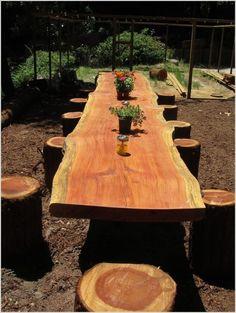 Wooden stumps around dinner table