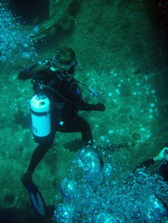 Diving Western Australia Busselton - HMAS Swan   Scuba Girl, Western Australia, Swan, Diving, Westerns, River, Girls, Toddler Girls, Swans