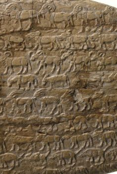Study traces ecological collapse over 6,000 years of Egyptian history -- ScienceDaily