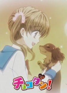 Chokotan! ¡AnimeQ! Animes Online