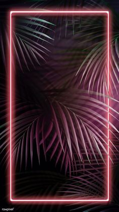 Tropical pink neon lights phone screen wallpaper, iphone and mobile phone . Pink Neon Wallpaper, Framed Wallpaper, Phone Screen Wallpaper, Tropical Wallpaper, Iphone Background Wallpaper, Aesthetic Iphone Wallpaper, Galaxy Wallpaper, Aesthetic Wallpapers, Lock Screen Backgrounds