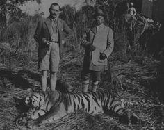 Mannerheim hunting Tigers in India. Something Old Something New, Hunts, Finland, Tigers, Safari, India, War, History, Asylum