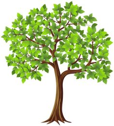 Free Trees Clipart, Palm PNG, Tree PNG, and Trees on a transparent background, High-quality Clipart Images. Family Tree Designs, Family Tree Art, Free Family Tree, Clip Art, Tree Clipart, Picture Tree, Thanksgiving Wallpaper, Old Oak Tree, Free Clipart Images