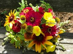 red zinnias and the molten gold rudbeckia (Black-eyed Susans) and shimmering yellow Mexican tulip poppies