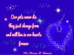 ♥ Our pets never die, they just change form and will live in our hearts forever.
