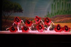 """Land of the Poppies scene, """"The Wizard of Oz,"""" Ballet Theatre of Ohio."""