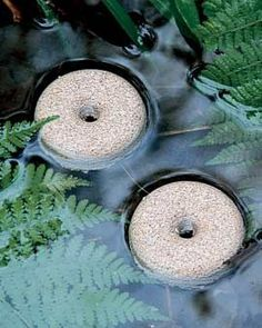 Stop Mosquitoes from Breeding in Your Birdbath or Pond! Any standing water can breed swarms of mosquitoes, even your birdbath or rain barrel. Our Mosquito Control Rings contain Bt israelensis, a naturally occurring bacterium that kills mosquito larvae for a full 30 days. Each slow-release, floating Control Ring treats 100 square feet of surface area in your pond or water garden. Control mosquitoes naturally Rings last for a month Each ring treats 100 square feet