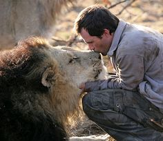 Kevin Richardson with his lion.