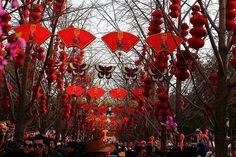 #ChineseNewYear #YearoftheMonkey #SpringFestival #China Beijing, Shanghai, All About China, Chinese Festival, Happy Lunar New Year, Dragon Dance, Visit China, Lion Dance, Year Of The Monkey