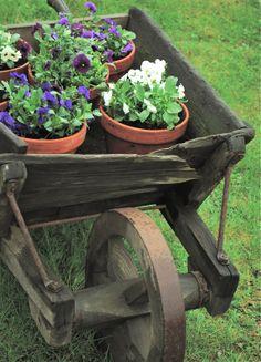Vintage wheelbarrow keeps on workin