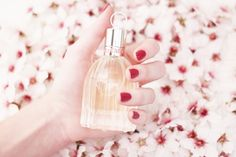 See by Chloé Perfume. My favorite perfume of all time.