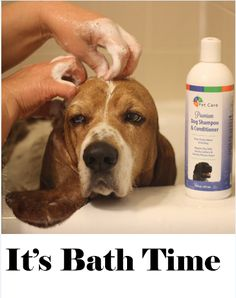 Spring has sprung it's time to wash off all the yuck and muck of winter! http://bvhpetcare.com/premium-dog-shampoo-conditioner/