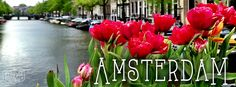 AmsterdamFeat
