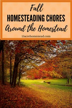 Fall homesteading chores are easier to tackle when you know what needs done and you make a plan for your chores!