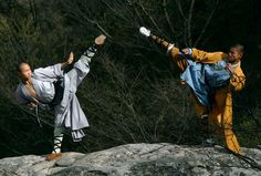 3000 x 2031 px free screensaver wallpapers for shaolin  by Newman Nail for  - TWD