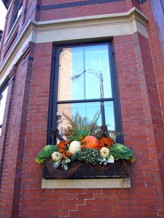 Your window box can be used in every season! These are the best easy Fall window box ideas, even if you're on a budget. Fall Window Boxes, Window Box Flowers, Window Planter Boxes, Fall Flower Boxes, Fall Flowers, Flower Pots, Flower Planters, Container Plants, Container Gardening