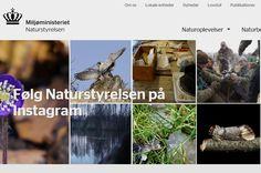 Naturstyrelsen (van het Deense Staatsbosbeheer): digitale gidsen van 100 bossen en natuurgebieden- informatie over het dierenleven en activiteiten, maar ook praktische zaken, zoals bankjes, toiletten en plattegronden.