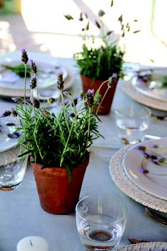Mesa provenzal decorada con macetitas con plantas de lavanda.