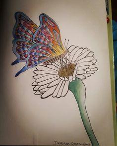 Quand le papillon butine la fleur