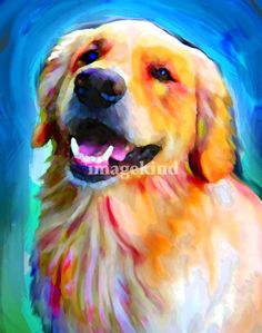 """Golden Retriever"" by David Corrente, // // Imagekind.com -- Buy stunning fine art prints, framed prints and canvas prints directly from independent working artists and photographers."