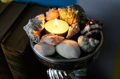 Ideas for decorating with rock or seashell collections (and yes, I have both.)