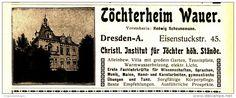Original-Werbung/Inserat/ Anzeige 1916 - TÖCHTERHEIM WAUER / DRESDEN - ca. 115 x 45 mm