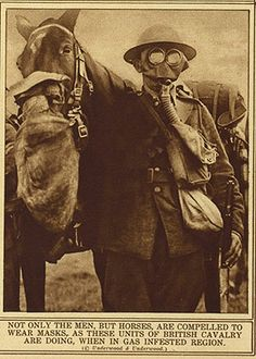 Horse and soldier in gas masks  Poison Protection  To protect against the poison gases used in World War I, both soldiers and horses wore gas masks. Horses' noses were covered but their eyes were not, since horses could tolerate the poisons better than humans.