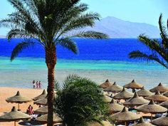 Coastal town of Sharm el Sheikh on the Red Sea in #Egypt