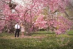 Blossomy Niagara Engagement from Scarlet Lens Photography — Vineyard Bride // Southern Ontario's Wedding Resource Engagement Couple, Engagement Session, Words That Describe Me, In My Feelings, Engagement Photography, My Best Friend, Ontario, Vineyard, Past