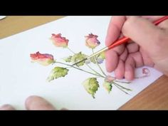 WATERCOLOR FLOWER PAINTING. WET ON WET TECHNIQUE - YouTube