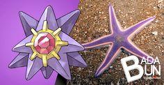 Badabun: 13 Pokemón que existen en la vida real. No puedo dejar de ver el ultimo.