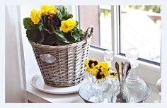 KWIATY NA KAŻDA OKAZJĘ   https://www.facebook.com/kwiaciarnia.lawendowa.5?ref=ts&fref=ts