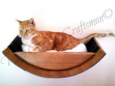 Hey, I found this really awesome Etsy listing at https://www.etsy.com/listing/229299331/cat-bed-birala-wine-barrel-wall-hanging
