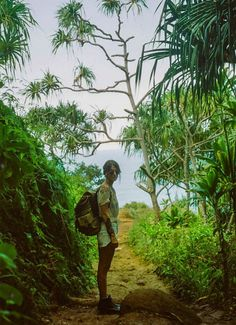 napali coast, kauai Trail..