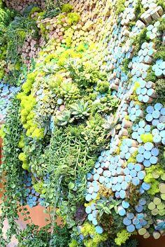 Anthropologie Cork Window Detail by Amy Kallen  ~  x   #lifeinstyle #greenwithenvy