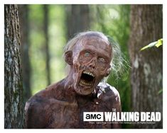 Stephen Vining  The Walking Dead Autographed/Personalized