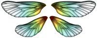 Fairy Wing Designs by Katherine Dewey Downloadable wings - butterfly wings and more