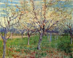 Orchard with Blossoming Apricot Trees, 1888 by Vincent van Gogh. Post-Impressionism. landscape. Van Gogh Museum, Amsterdam, Netherlands